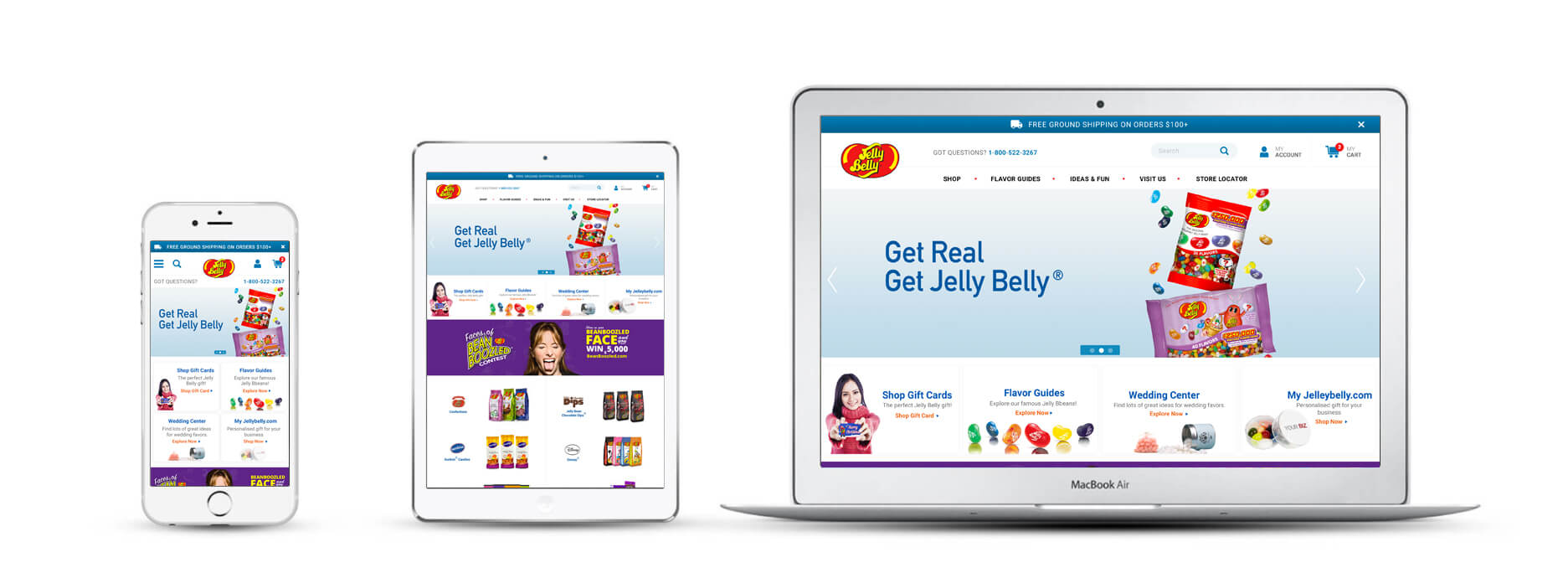 Echidna Jelly Belly Website Design Across Devices