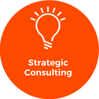 Echidn_Strategic_Consulting