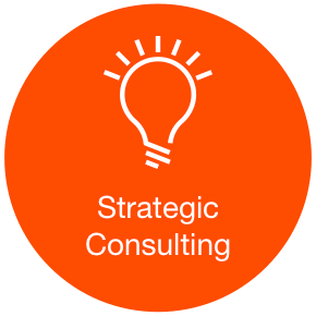 Echidna_Strategic_Consulting