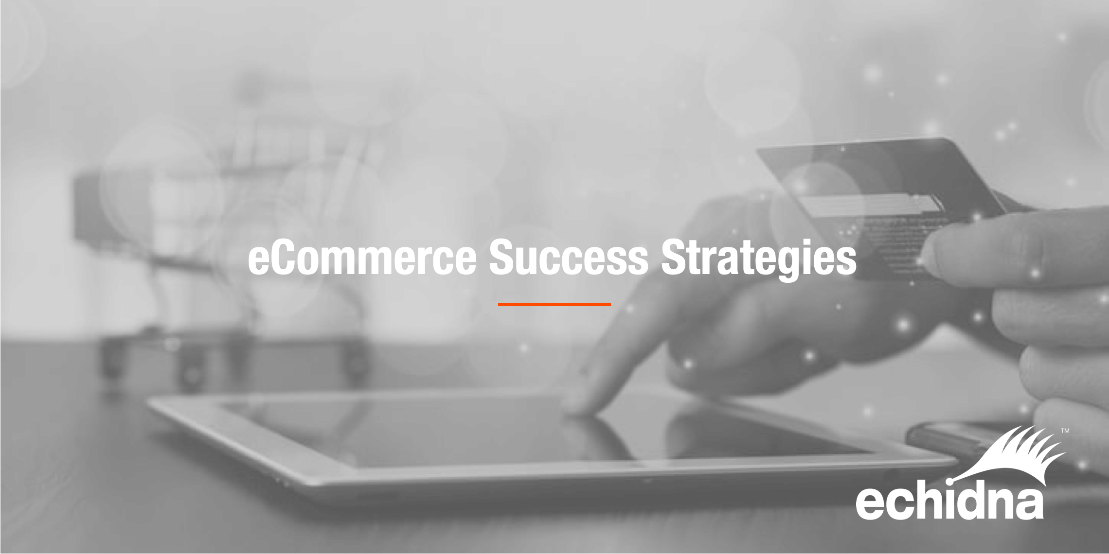 eCommerce success Strategies.jpg